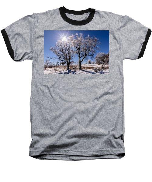 Ice Coated Trees Baseball T-Shirt by Randy Scherkenbach