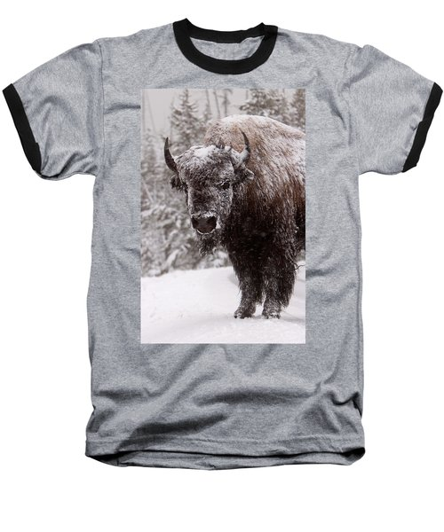Ice Cold Winter Buffalo Baseball T-Shirt