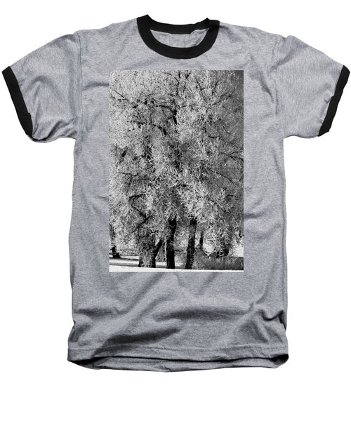 Iced Cottonwoods Baseball T-Shirt by Colleen Coccia