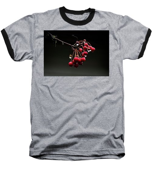 Iced Crab Apples Baseball T-Shirt