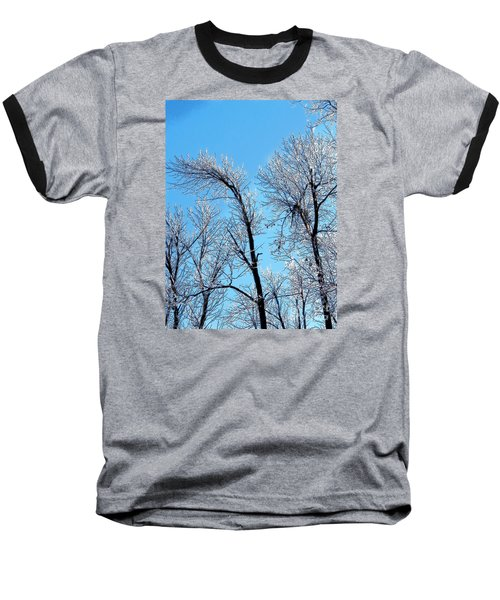 Iced Trees Baseball T-Shirt by Craig Walters