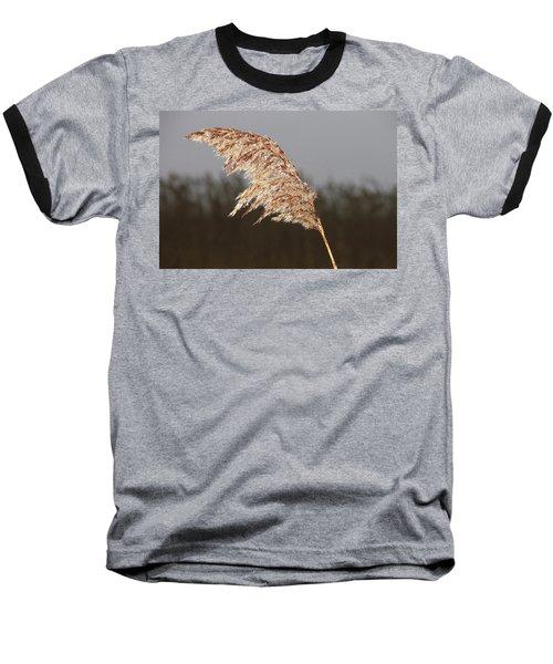Iced Up Baseball T-Shirt