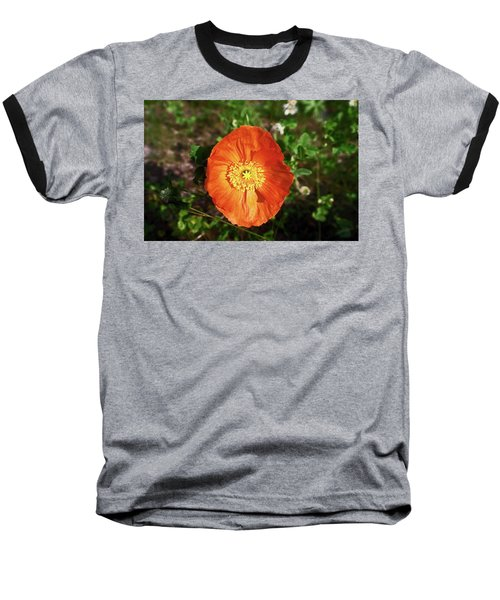 Iceland Poppy Baseball T-Shirt by Sally Weigand