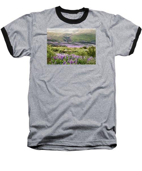 Icelandic Treasures Baseball T-Shirt
