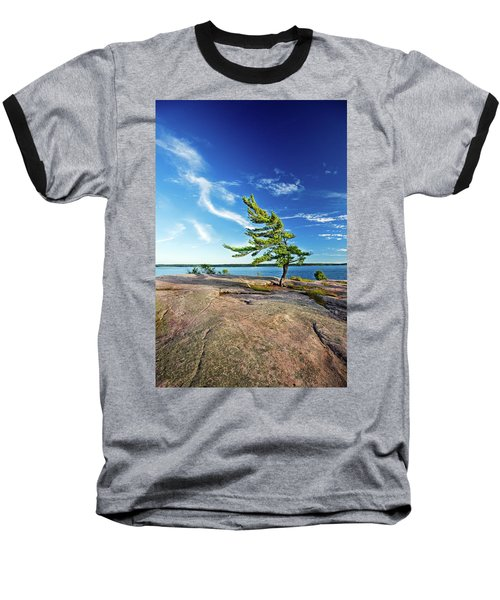 Iconic Windswept Pine Baseball T-Shirt