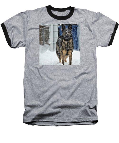 If You Dare Baseball T-Shirt by Nikki McInnes