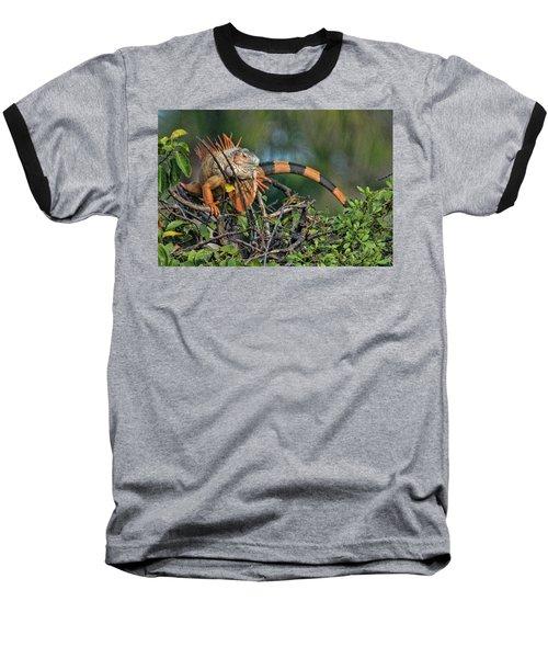 Iggy Baseball T-Shirt