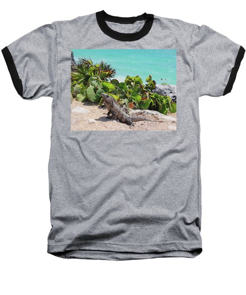 Baseball T-Shirt featuring the photograph Iguana At Tulum by Roupen  Baker