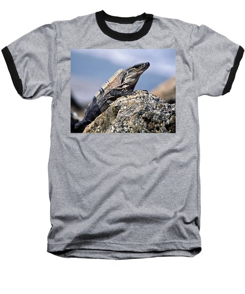 Baseball T-Shirt featuring the photograph Iguana by Sally Weigand