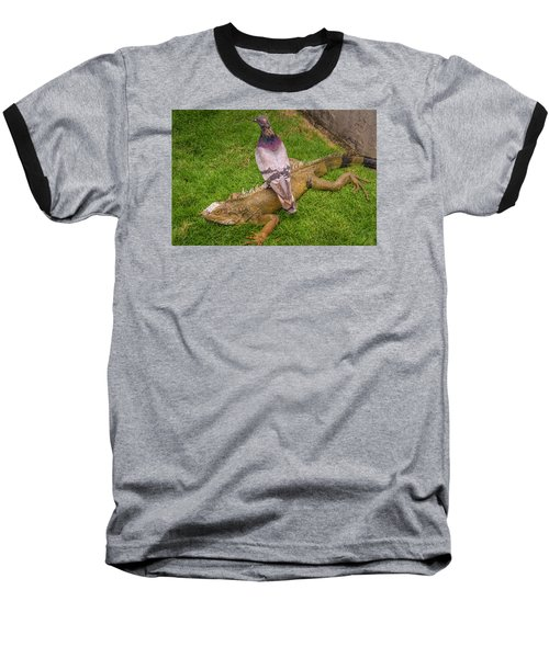 Iguana With Pigeon On Its Back Baseball T-Shirt