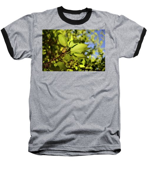 Illuminated Leaves Baseball T-Shirt