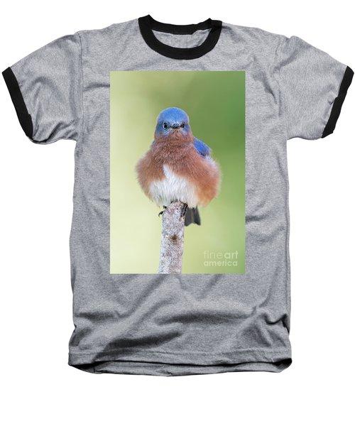 I May Be Fluffy But I'm No Powder Puff Baseball T-Shirt