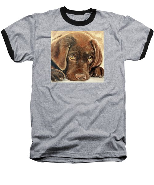 I'm Sorry - Chocolate Lab Puppy Baseball T-Shirt by Julie Brugh Riffey
