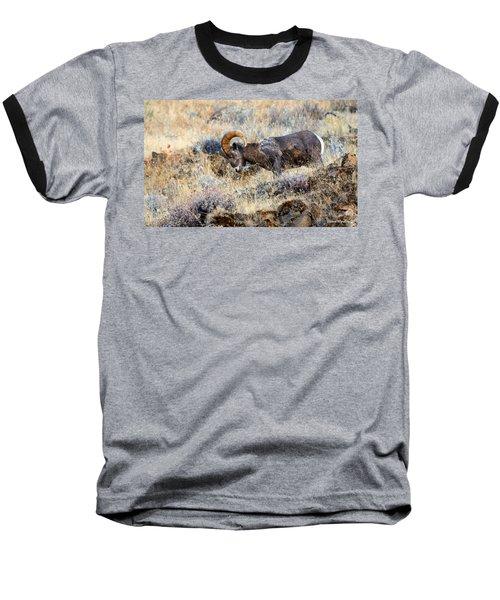 I'm Still Com'n For You Baseball T-Shirt
