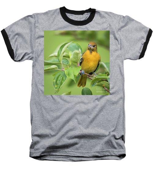Immature Baltimore Oriole  Baseball T-Shirt