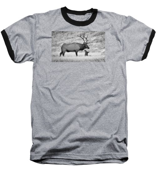 In Charge Baseball T-Shirt by Kelly Marquardt