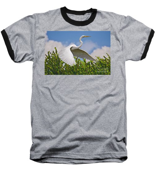 In Flight Baseball T-Shirt by Judy Kay