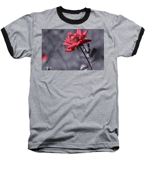 In Full Bloom 2 Baseball T-Shirt by Warren Thompson