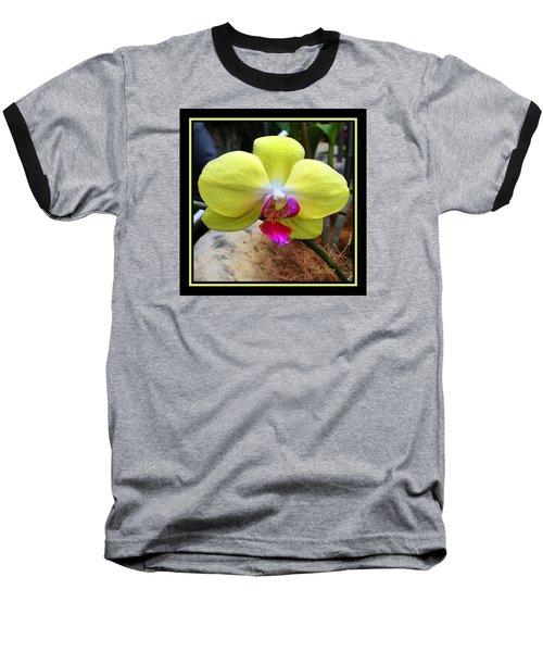 In Living Color Baseball T-Shirt