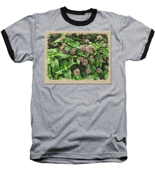 Baseball T-Shirt featuring the photograph In The Highline Garden by Joan  Minchak