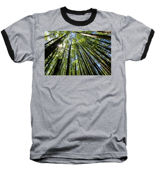 In The Swamp Baseball T-Shirt by Menachem Ganon