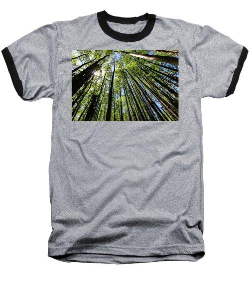 In The Swamp Baseball T-Shirt