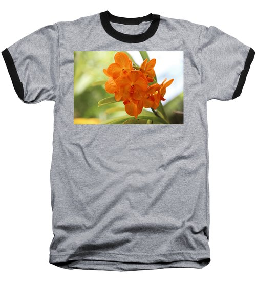 Baseball T-Shirt featuring the photograph In This World by Michiale Schneider