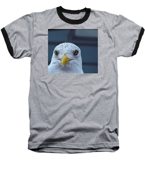 In Your Face Gull Baseball T-Shirt by Richard Ortolano