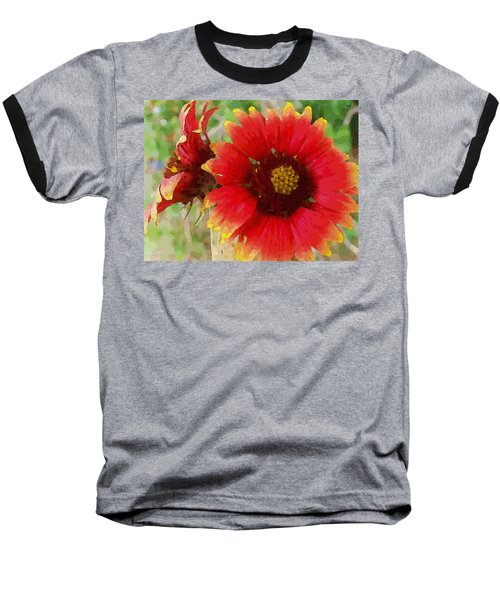 Indian Blanket Flowers Baseball T-Shirt
