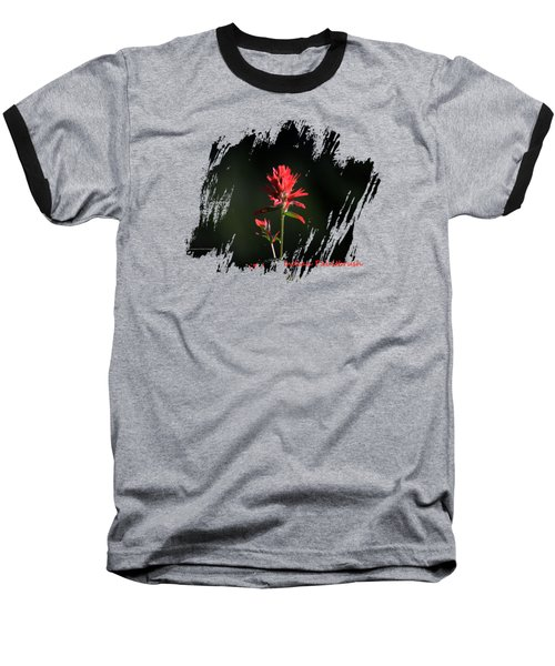 Indian Paintbrush 3 Baseball T-Shirt