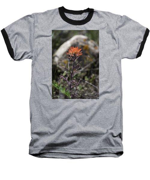 Indian Paintbrush 7 Baseball T-Shirt