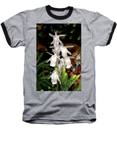 Indian Pipes On Club Moss Baseball T-Shirt by Meta Gatschenberger