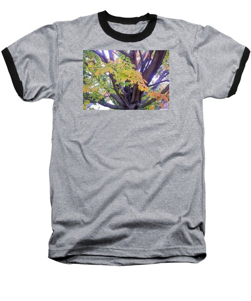 Indian Tree Baseball T-Shirt by Kristine Nora