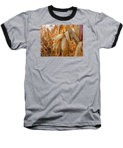 Indiana Corn 3 Baseball T-Shirt by Tina M Wenger
