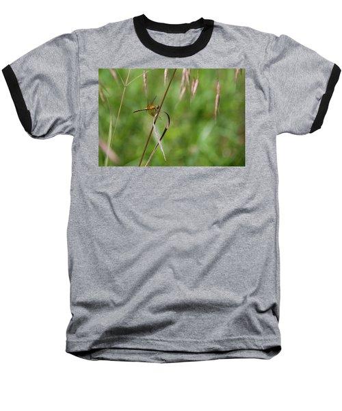 Baseball T-Shirt featuring the photograph Inl-4 by Ellen Lentsch