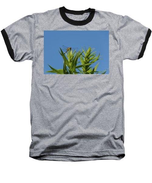 Baseball T-Shirt featuring the photograph Inl-6 by Ellen Lentsch