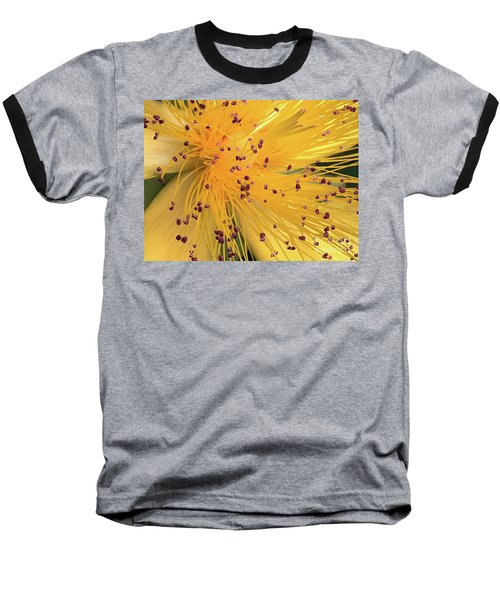 Inside A Flower - Favorite Of The Bees Baseball T-Shirt