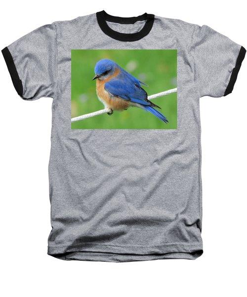 Intense Blue Bird Baseball T-Shirt by Betty Pieper