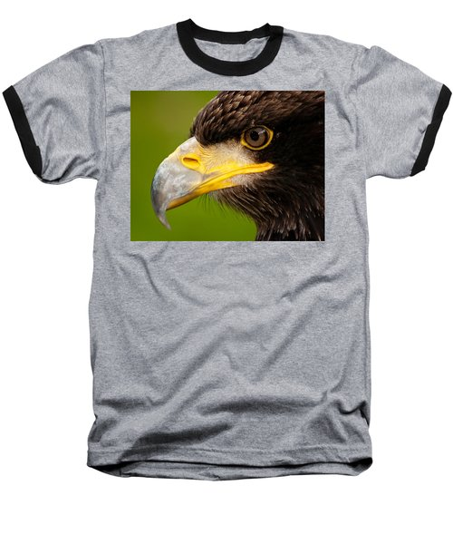 Intense Gaze Of A Golden Eagle Baseball T-Shirt