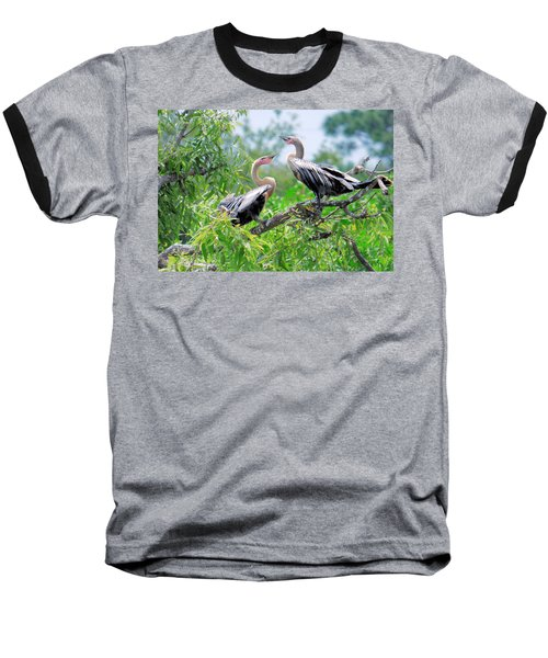 Baseball T-Shirt featuring the photograph Interacting Young Anhingas by Rosalie Scanlon