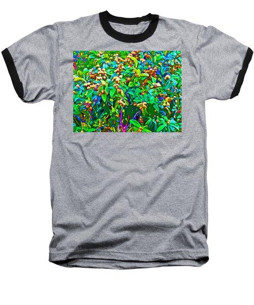 Intergalactic Orange Grove Baseball T-Shirt