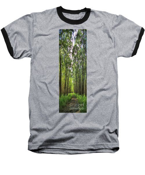 Baseball T-Shirt featuring the photograph Into The Forest I Go by DJ Florek