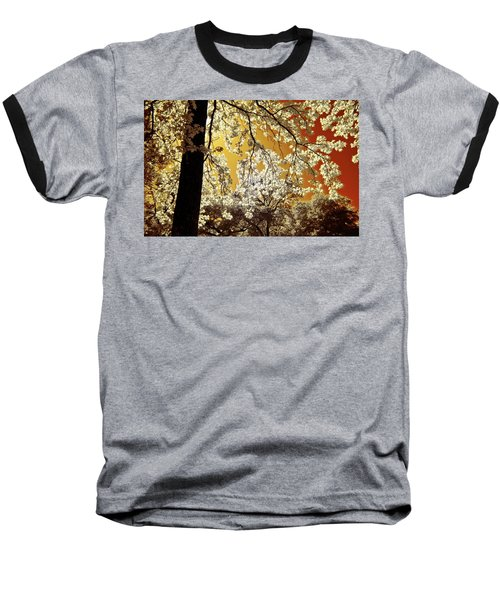 Baseball T-Shirt featuring the photograph Into The Golden Sun by Linda Unger