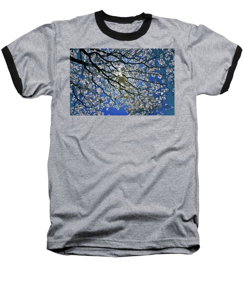 Baseball T-Shirt featuring the photograph Into The Sun by Linda Unger