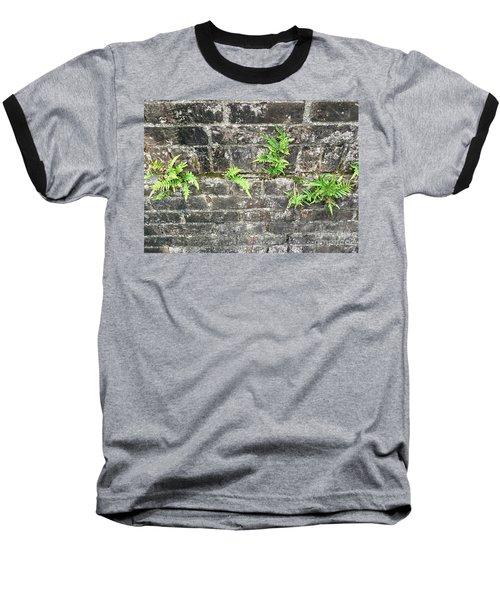 Intrepid Ferns Baseball T-Shirt