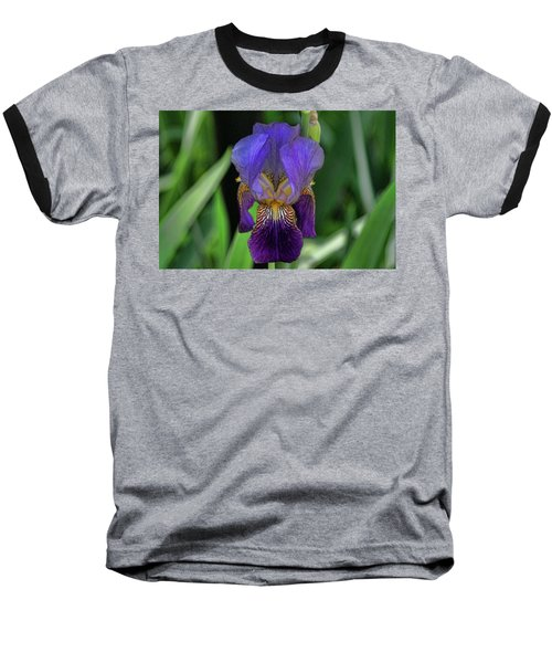 Iris Purple 2 Baseball T-Shirt