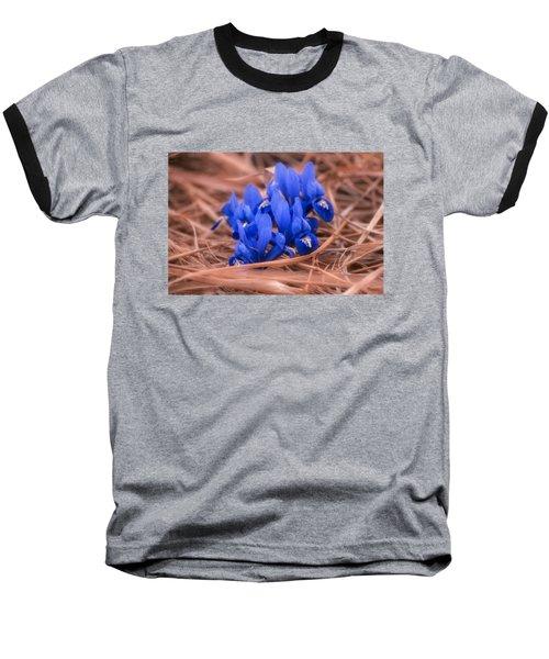 Irises Baseball T-Shirt by Konstantin Sevostyanov