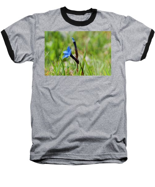 Baseball T-Shirt featuring the photograph Irish Gentians by Rob Hemphill