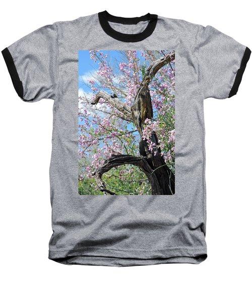 Ironwood In Bloom Baseball T-Shirt