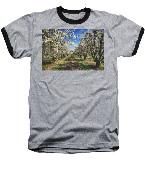 It's A New Day Baseball T-Shirt by Laurie Search